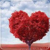 پازل عاشقانه 23
