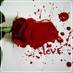 پازل عاشقانه 3